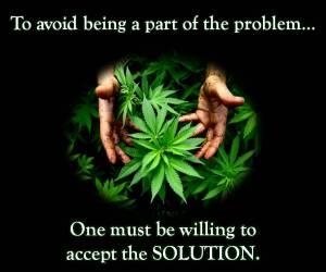 cannabis debate