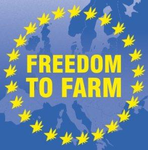 drugs law europe