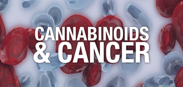 Cannabis and Cannabinoids - National Cancer Institute
