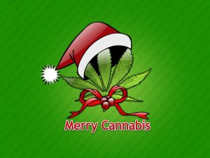Christmas cannabis