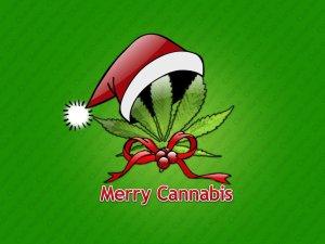 Christmas cannabis