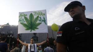 Serbian cannabis