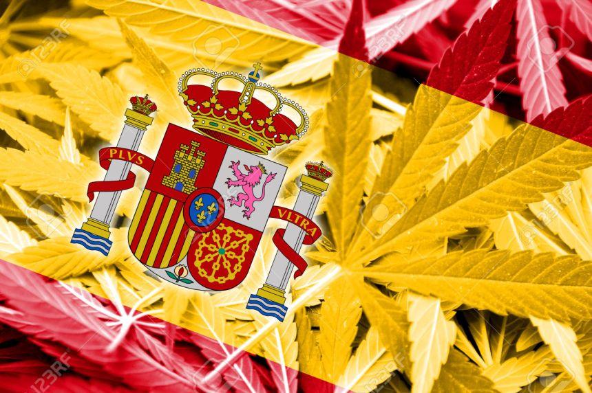 Spain Flag on cannabis background. Drug policy. Legalization of marijuana