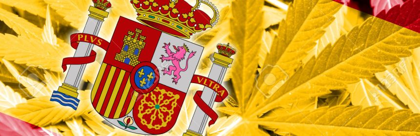 Spain Flag on cannabis background. Drug policy. Legalization of marijuana