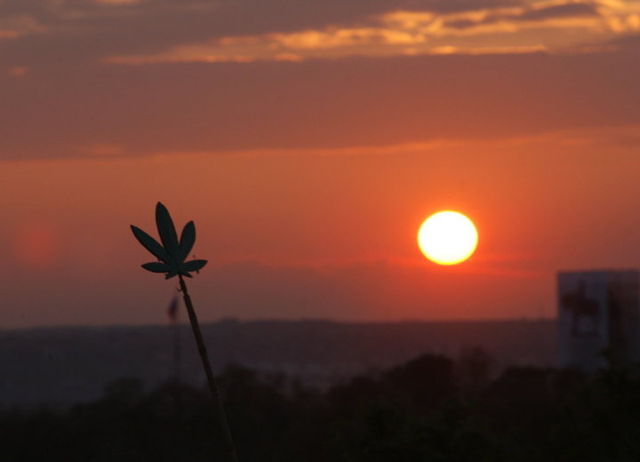 pot sunset